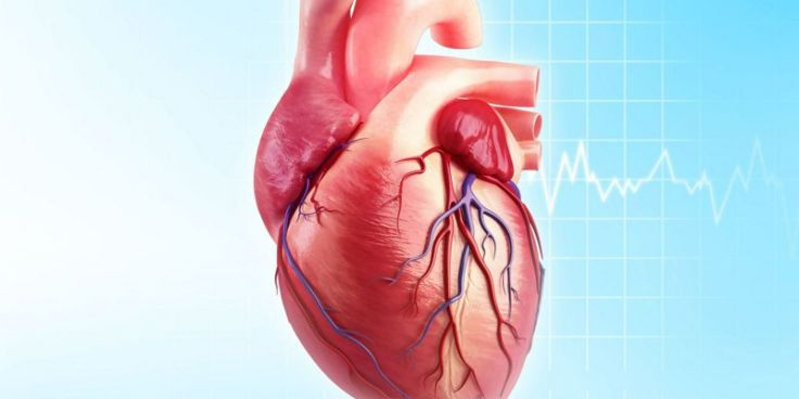 codigo salud online implante válvula aórtica (3)