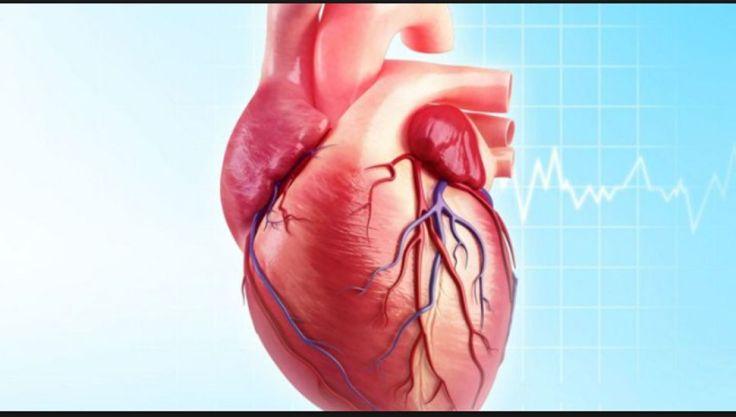 codigo salud online cardiopatias congenitas (2)