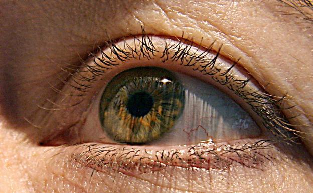 codigo salud online glaucoma (2)