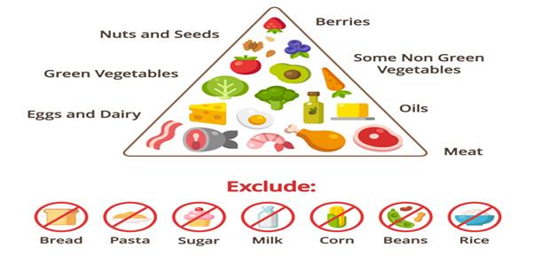 codigo salud online dieta cetogenica epilepsia 3