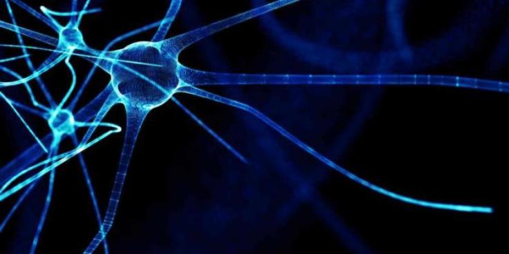 codigo salud online esclerosis multiple (1).jpg