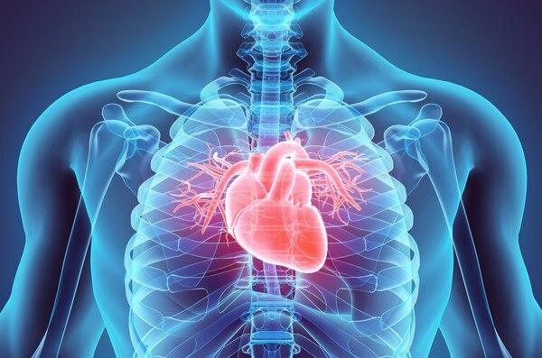 codigo salud online obesidad corazon (2).jpg