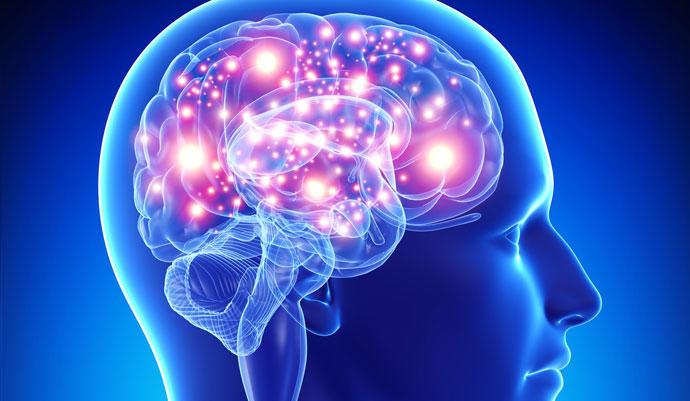 codigo salud online cerebro (3)