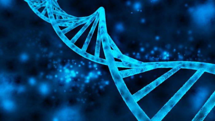 codigo salud online La OMS crea un registro mundial para investigaciones sobre edición del genoma humano (4)