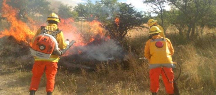 codigo salud online Recomendaciones para quienes queden expuestos al humo de los incendios forestales (2)