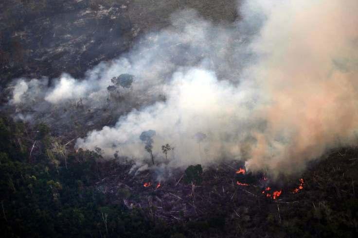 codigo salud online Recomendaciones para quienes queden expuestos al humo de los incendios forestales (3)