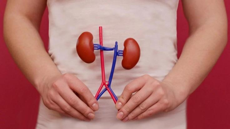 codigo salud online cancer renal riñon (3)