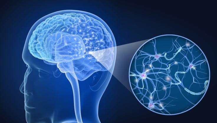 codigo salud online Promisorios resultados de una droga para la esclerosis múltiple (1)