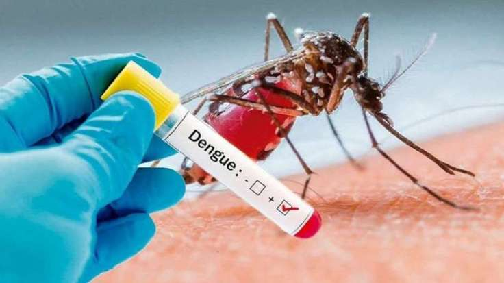 codigo salud online dengue (1)