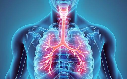 codigo salud online fibrosis quistica en adutos (1)