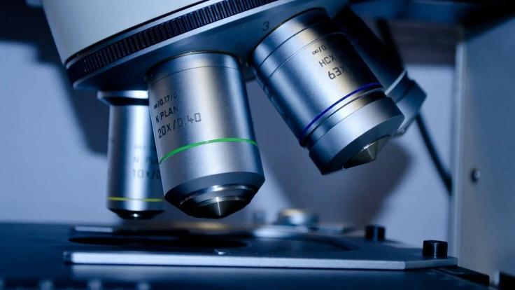codigo salud online Laboratorio de USA desarrolló fórmula como potencial apoyo al sistema inmunológico